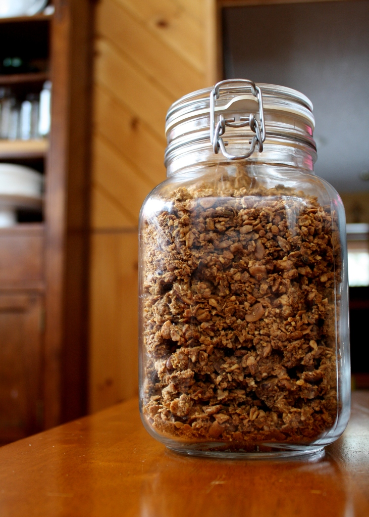 soaked pumpkin granola-002
